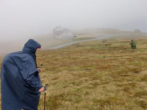 Am Gipfel überfällt uns endgültig Nebel und Regen ,sodas wir die Hütte kaum finden