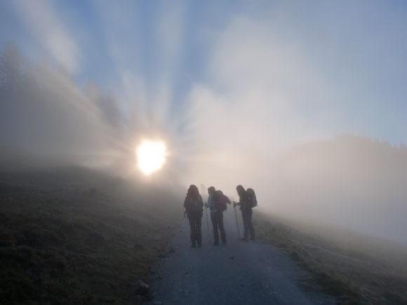 Unterwegs im Morgenlicht