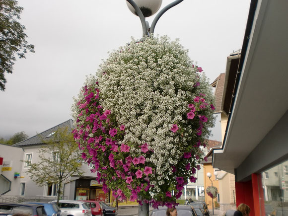 Blumenschmuck in Ferlach