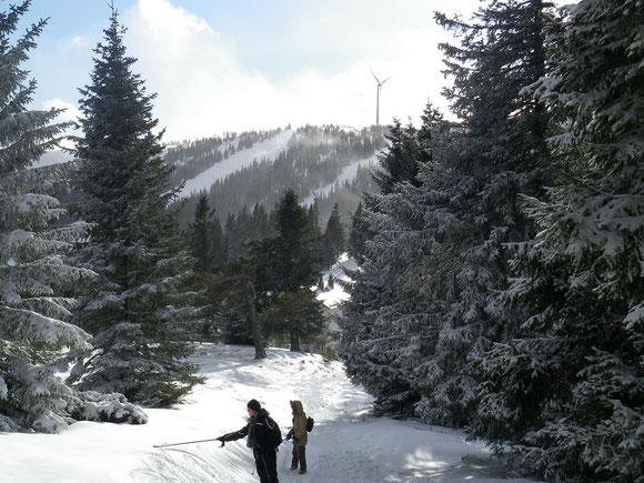 Herrliche Landschaft am Salzstiegl bei Neuschnee