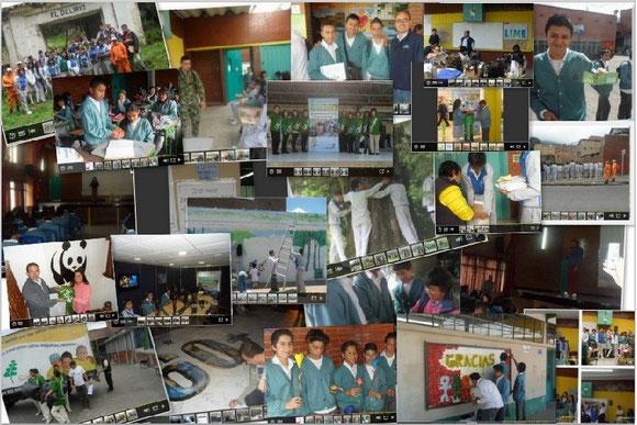 Actividaes 2012