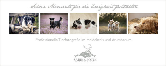 Tierfotografie, Tiere fotografieren, Sabine Botje, Hodenhagen, Walsrode