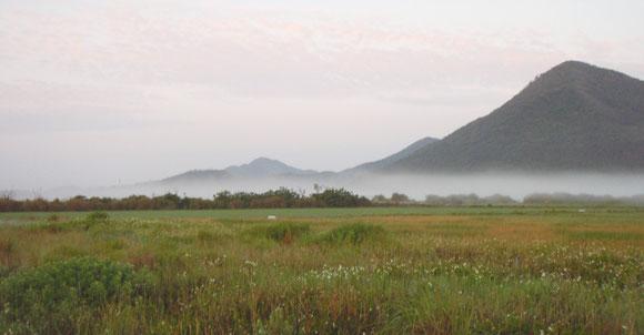色づいた稲穂と霞む山々が、幻想的で美しい田名の朝を演出する