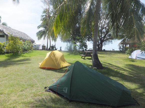Camping unter Palmen: wo das Grün aufhört geht es 2 Stufen runter und man steht am Strand - traumhaft!