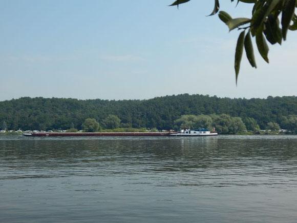 Binnenschiff auf der Elbe