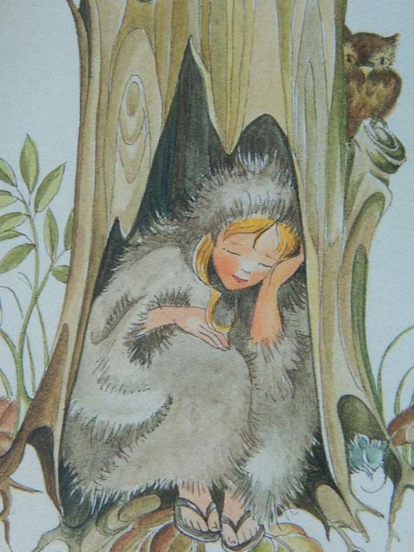 Motiv Allerleirauh von Margret von Borstel, erhältlich beim Waldowverlag