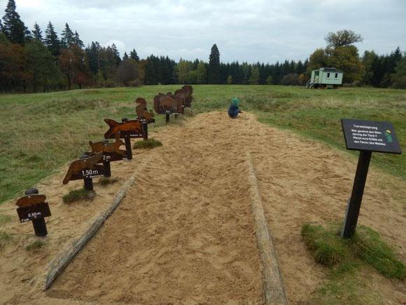 Löwenzahnpfad, Hohnehof, Drei Annen Hohne, Naturentdeckerpfad