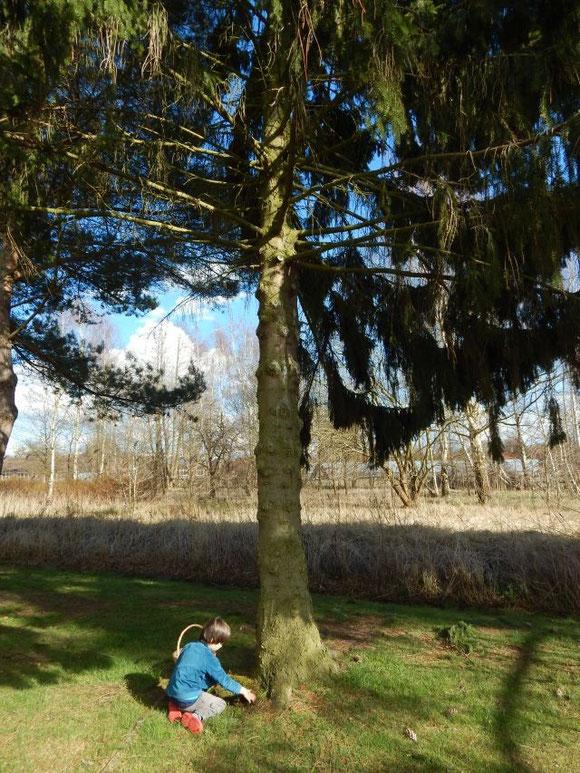 Ostern 2015, Nester bauen mit Kindern, Moosnest, Osternest