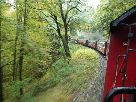"""Fahrt mit der Harzer Schmalspurbah (""""Brockenbahn"""") nach Wernigerode"""