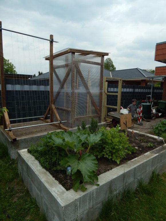 Kräuterbeet u Tomatenhaus mit Bohnengestell