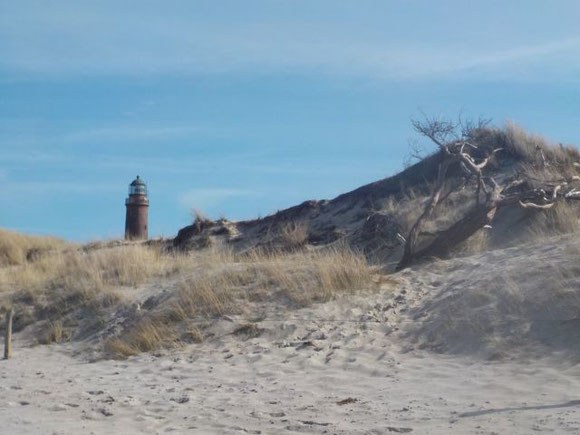Leuchtturm, Darßer Ort, Prerow, Natureum