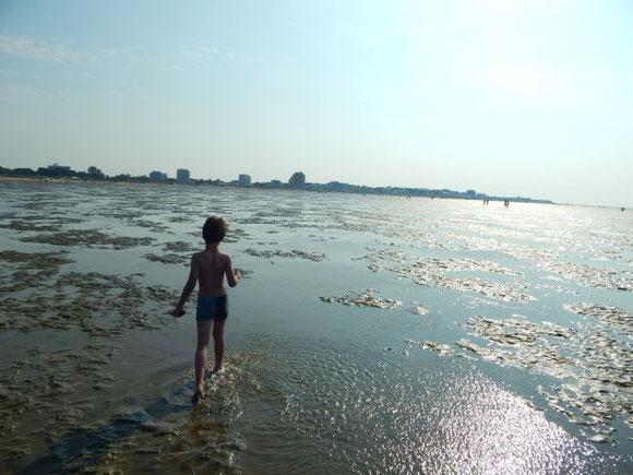 """Mein """"Kleiner"""" im Watt... In der Ferne der Strand von Cuxhaven-Dunen"""