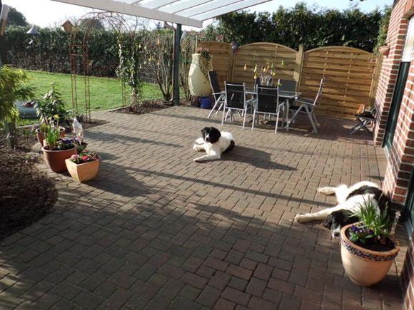 Hurra, endlich ist der Frühling da! Ida und Lina faulenzen auf der Terrasse.