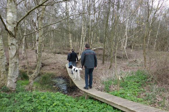 Karfreitag 2012 - Ausflug ins Bathorner Moor