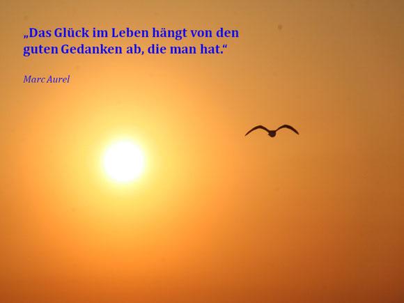 Matthias Haberland - pixelio.de
