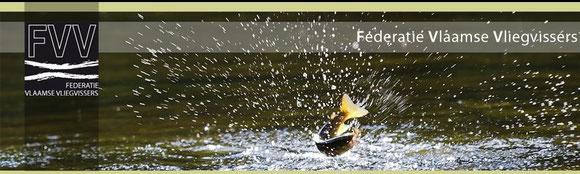 Federatie Vlaamse vliegvissers: Deze site geeft toegang tot veel info over evenementen,beurzen en andere wetenswaardigheden in Vlaanderen en Walonië.