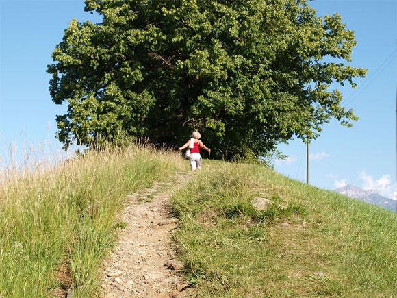 Behandlungsraum von Dagmar Hiller in Sonnenbühl Schwäbische Alb