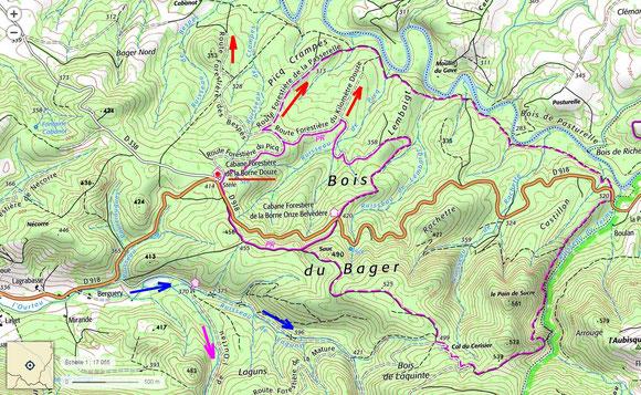 Des randonnées dans la forêt du Bager. Pistes pédestres, VTT. Autres thèmes: Géologie, forêt cathédrale, petite Amazonie, guidées au besoin.