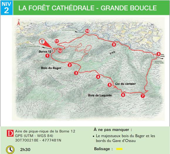 Circuit dans la forêt à proximité immédiate de nos locations au Bager sud d'Oloron