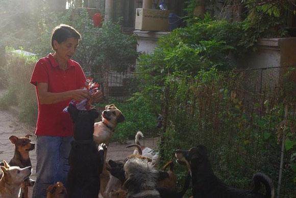 Carmen hat Spenden aus Deutschland bekommen und verteilt sofort Leckerchen an die Hunde
