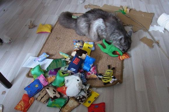Merlin hatte Spaß beim Auspacken der Duftpost