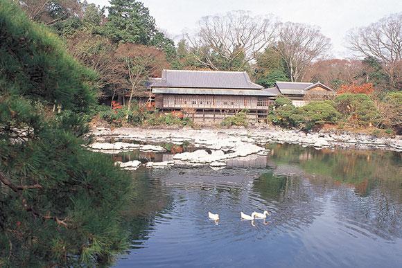 (写真は楽寿園:【写真提供】静岡県観光協会)