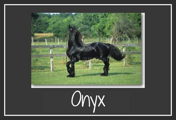 Copyright by www.boblangrish.com / bearbeitet von uns mit www.picmonkey.com
