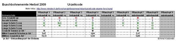 Bohnenernte_Urzeitcode-2009_Ertrag
