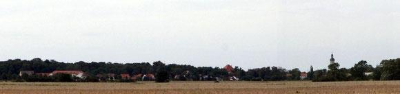 Wölkau - Blick aus Richtung Naundorf