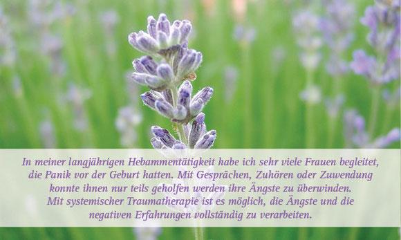 Hebammendienst, Traumatherapie Kreuzlingen, Lengwil