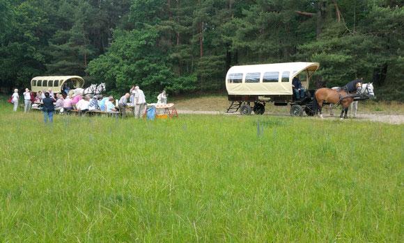 Busreisengruppen mit Kutschenkarsten auf Tour