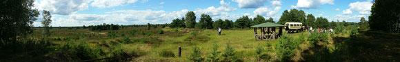 Kyritz-Ruppiner-Heide  hier auf dem Sielmann-Hügel mit Kutschenkarsten
