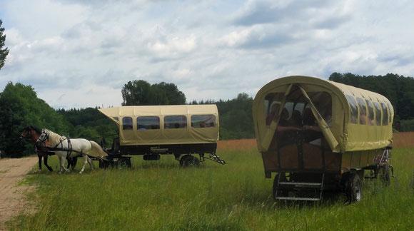 Kutsch und Planwagentouren für kleine bis grosse Gruppen auch mit Picknick möglich