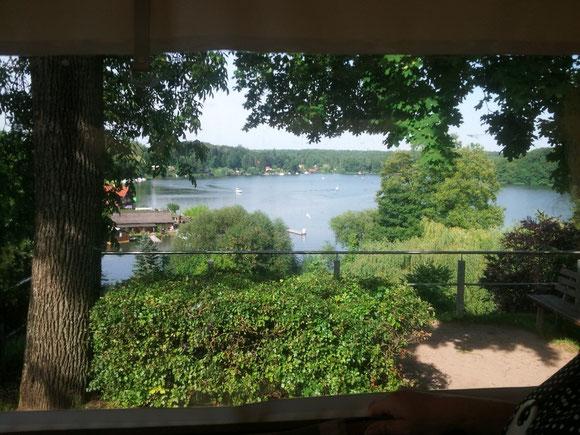 """ein Blick vom Kremser  in Flecken Zechlin auf den """"Schwarzer See"""""""