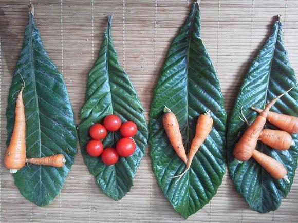 2014年8月31日(日) ヤーサイ祭り 祝音vol.2(野菜の恵みの日をジャンベ瞑想&打楽器とフルートの音遊びとヴィーガンランチで祝う一日)