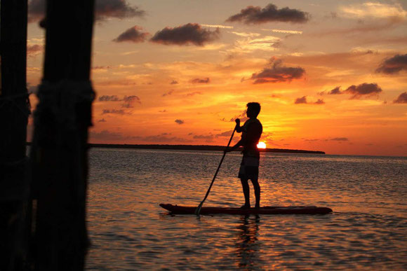 View Paddleboards at Kayak World Products