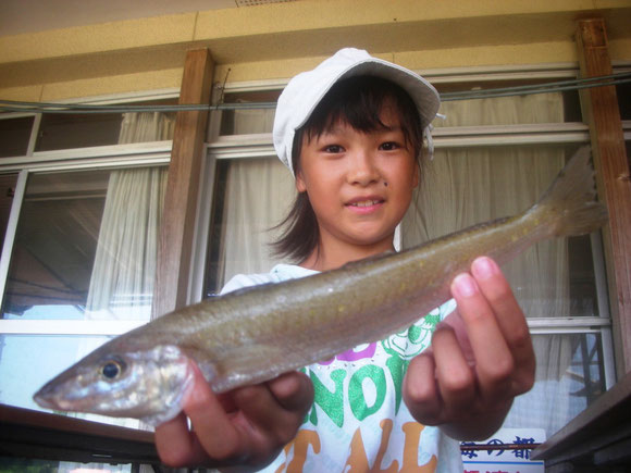 5月22日 ボート釣りで濱野さん キス26匹 トラハゼ5匹 グチ1匹