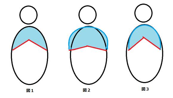 肋骨と横隔膜