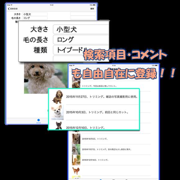 スマートフォンアプリ 写真管理 画像管理 フォトちゃん