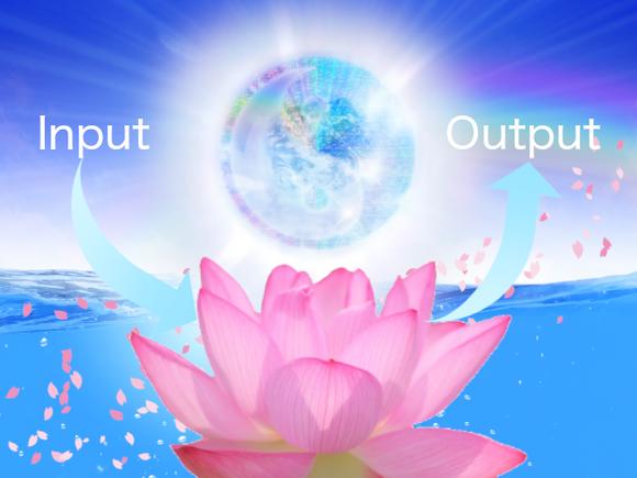 入力と出力の間に調和する【日常生活の変容3】