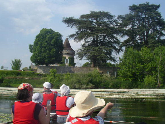 Château de Saint Aulaye avec ses magnifiques cèdres