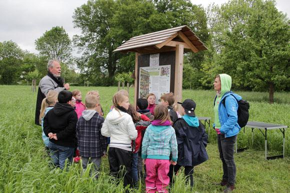 Kinder bestücken Insektenhotel