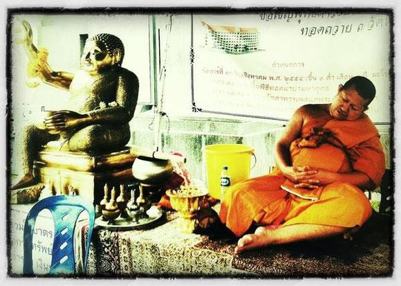 #ThailandLive Tag 8