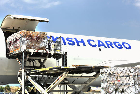 While pax figures are contracting at TK, cargo keeps on going up  -  courtesy TK