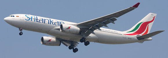 A single freighter might soon complement the carrier's passenger fleet. Pictured here is an A330 pax  -  company courtesy