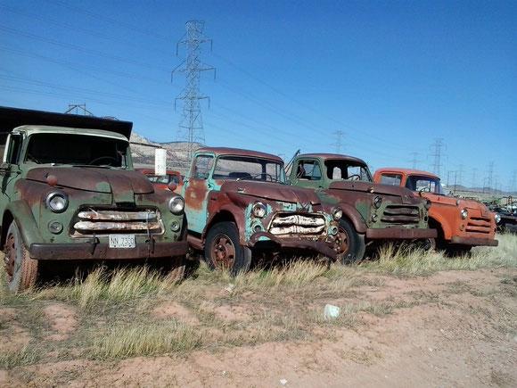 Bild: Old Truck, HDW-USA, Roadtrip, Mister T. und der Weiße Büffel