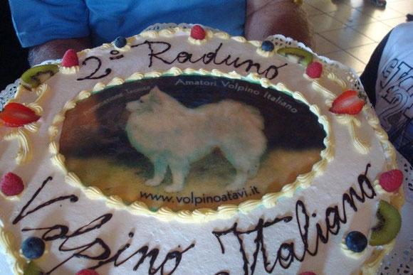 Raduno ATAVI 2011 classe Baby