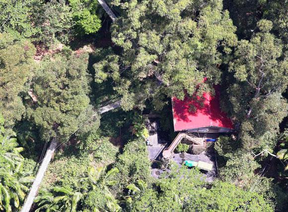 Wieviel Dschungel Steckt Tatsachlich Im Rtl Camp Life Blog