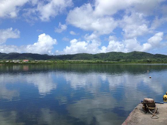 仲間川河口