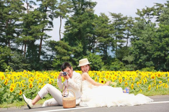明野ひまわり畑ウェディングロケーションフォトウェディングひまわりウェディング ひまわりフォトウェディング ひまわり結婚写真 ひまわり結婚式前撮り ひまわり和装前撮り